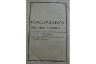 Observations-2_X_detail